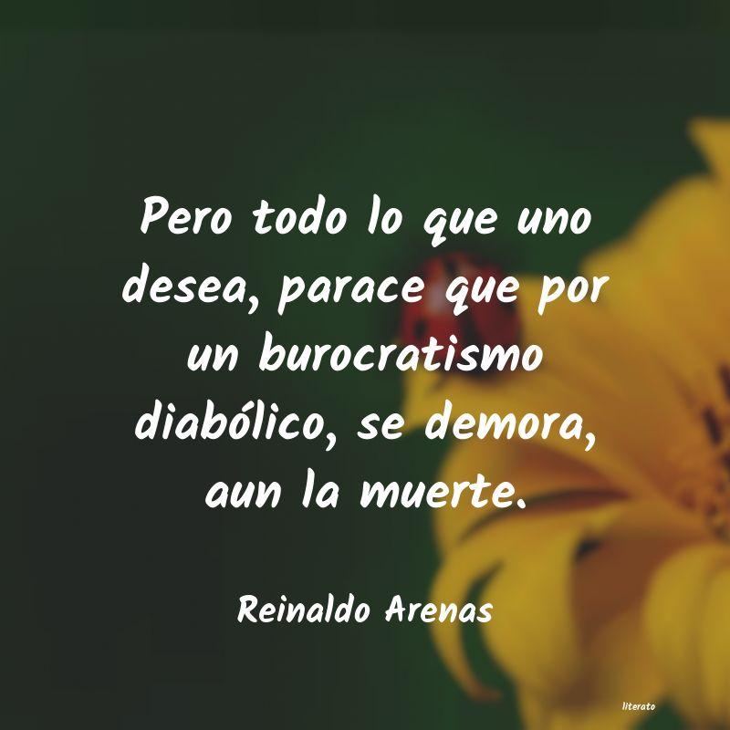 Reinaldo Arenas Pero Todo Lo Que Uno Desea Pa