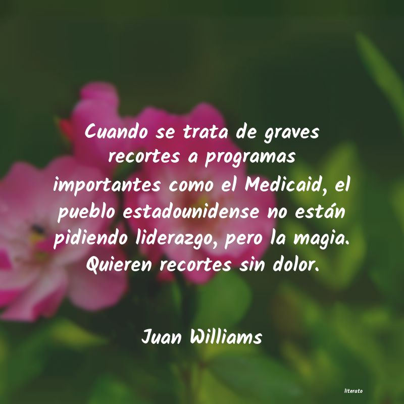 Frases de Juan Williams