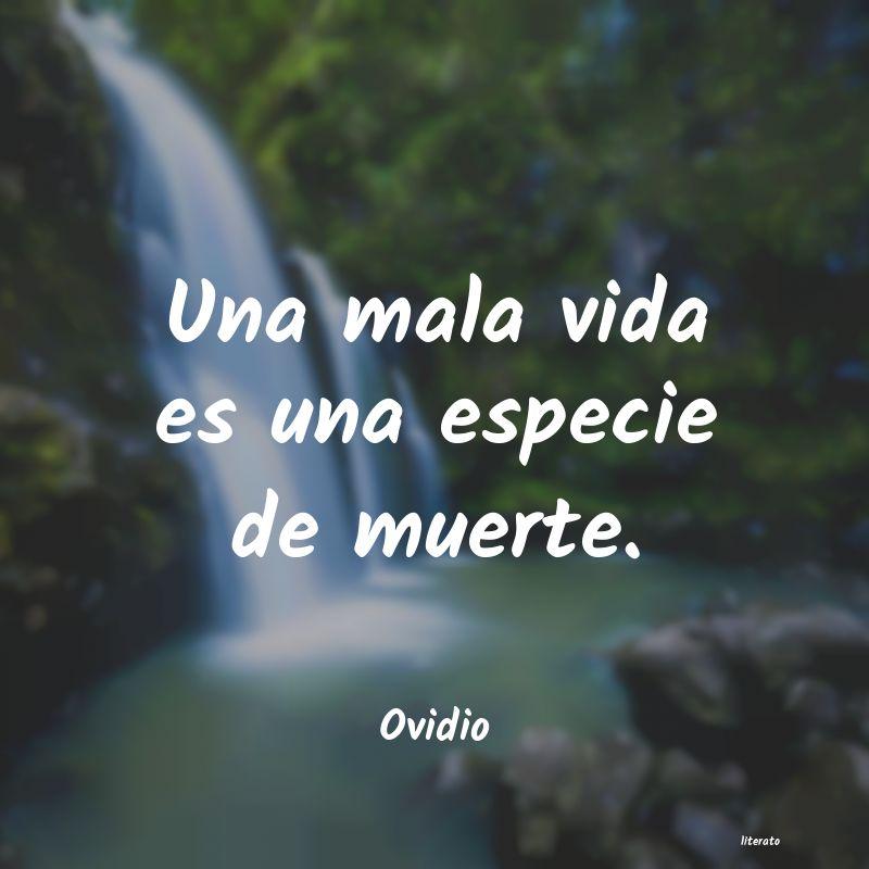 Ovidio Una Mala Vida Es Una Especie D