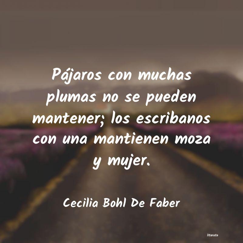 Cecilia Bohl De Faber Pájaros Con Muchas Plumas No