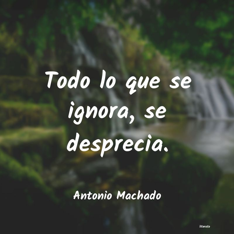 Antonio Machado Todo Lo Que Se Ignora Se Desp
