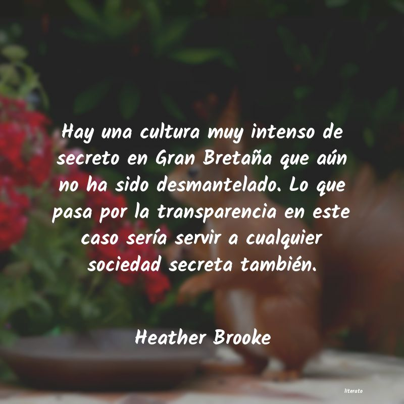 Frases de Heather Brooke