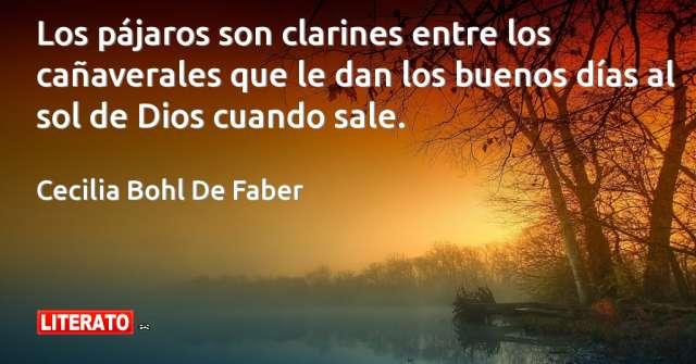 Frases de Cecilia Bohl De Faber