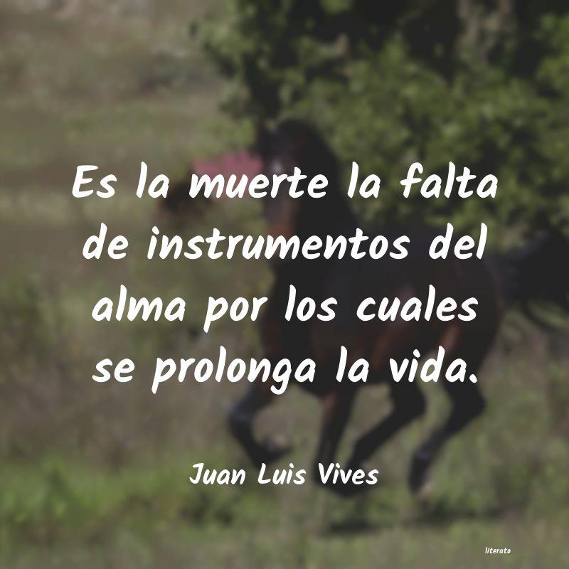Juan Luis Vives Es La Muerte La Falta De Instr