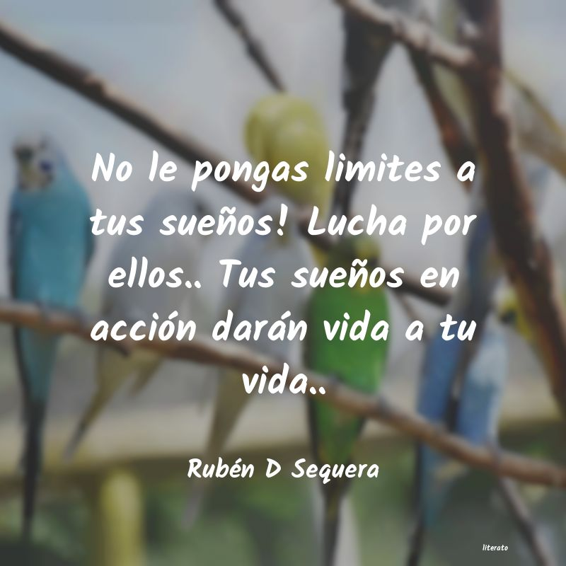 Rubén D Sequera No Le Pongas Limites A Tus Sue