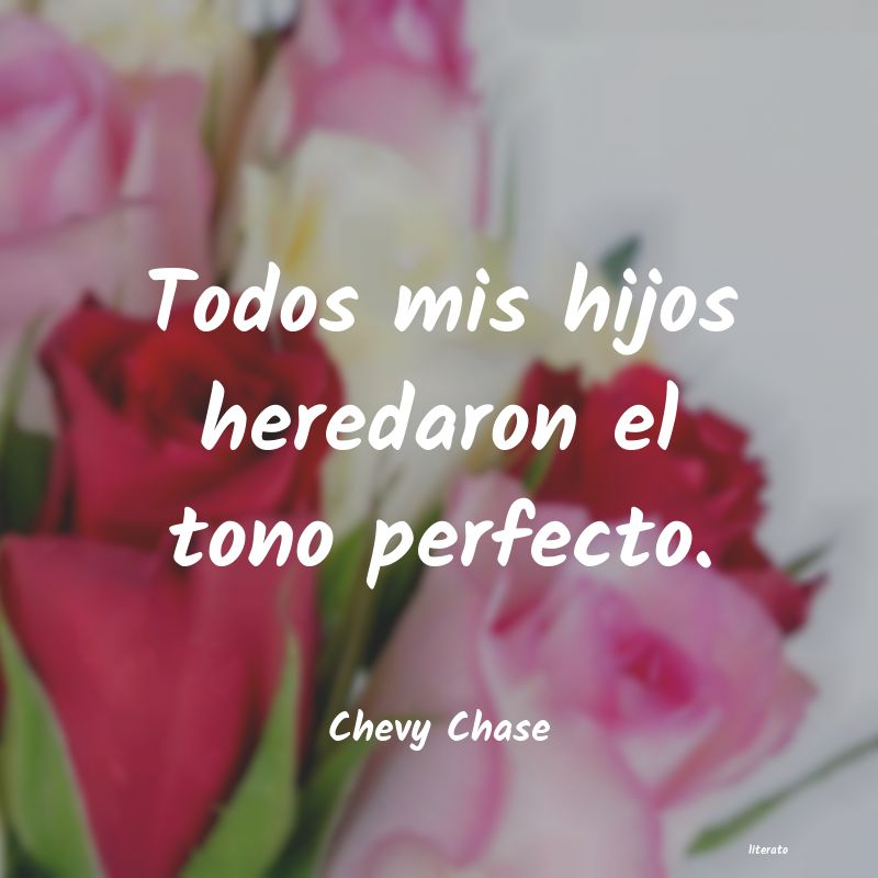 Frases de Chevy Chase