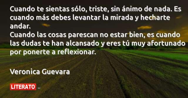 Frases de Veronica Guevara