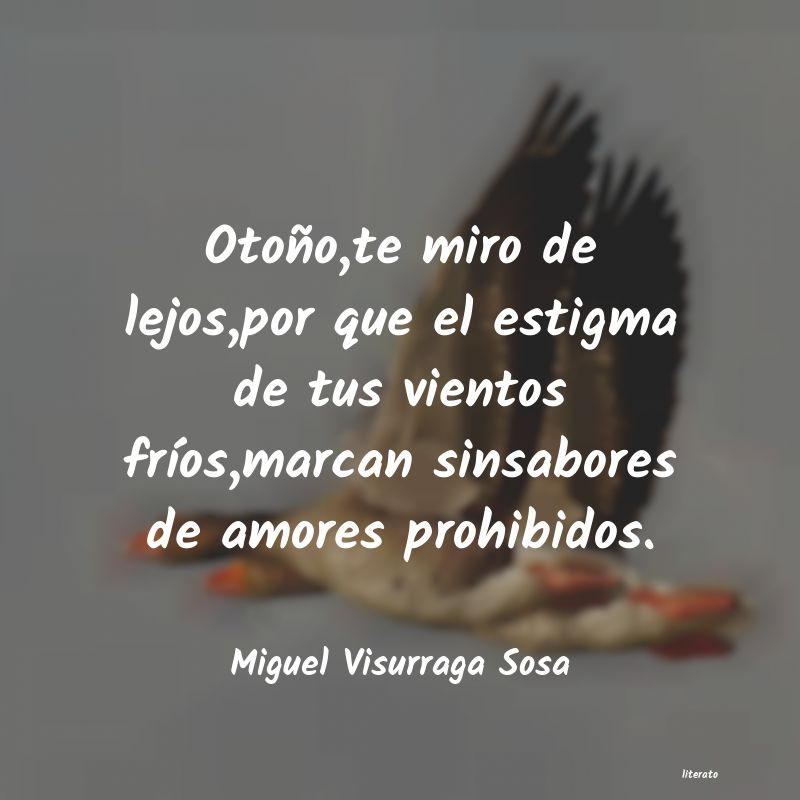 Miguel Visurraga Sosa Otoñote Miro De Lejospor Qu