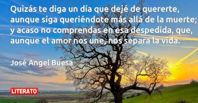 Frases de José Angel Buesa