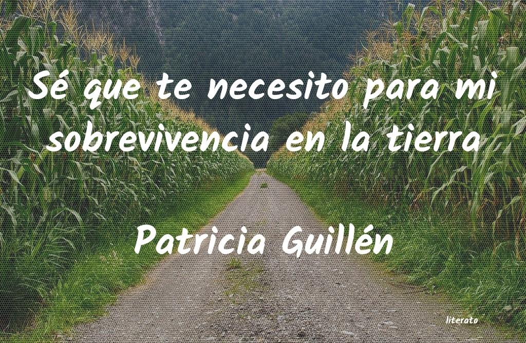 Patricia Guillén Sé Que Te Necesito Para Mi So