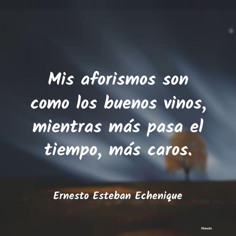 Ernesto Esteban Echenique Mis Aforismos Son Como Los Bue