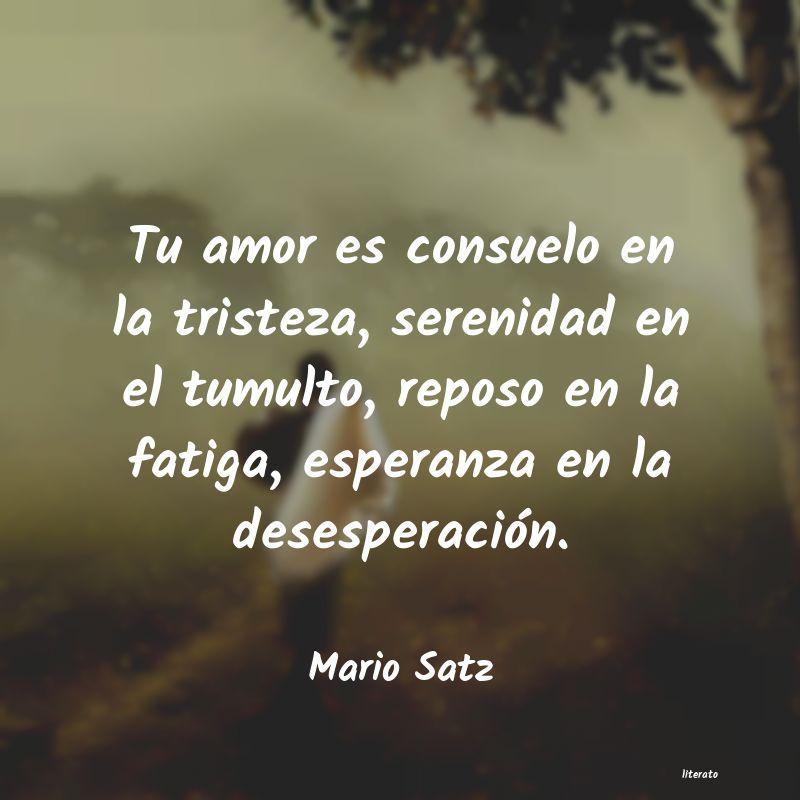 Mario Satz Tu Amor Es Consuelo En La Tris