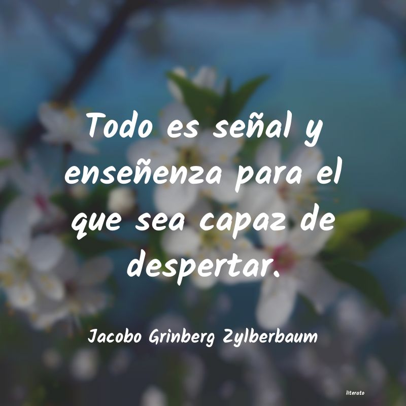 Frases de Jacobo Grinberg Zylberbaum