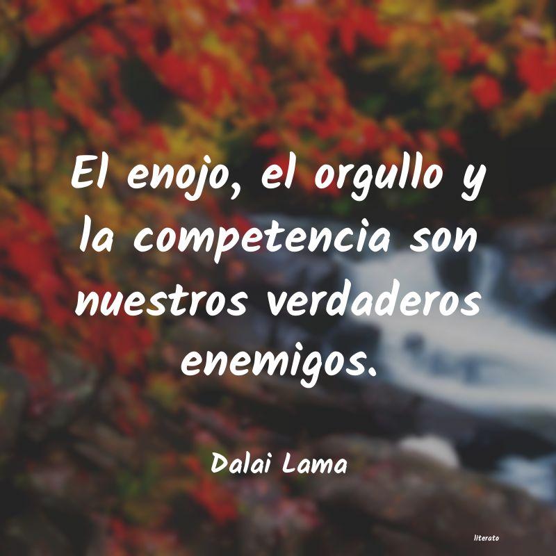 Frases Para Calmar El Enojo Literato