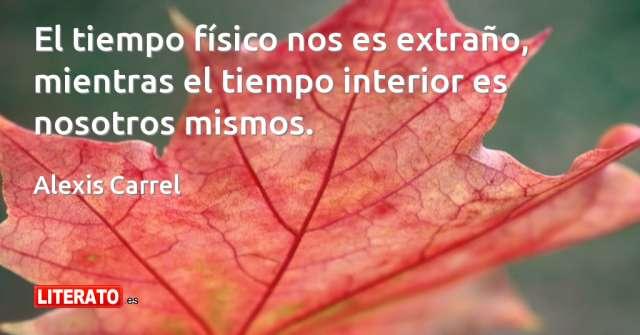 Frases de Alexis Carrel