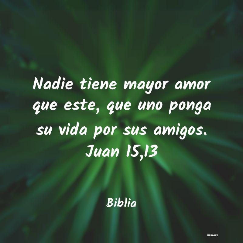 Biblia Nadie Tiene Mayor Amor Que Est