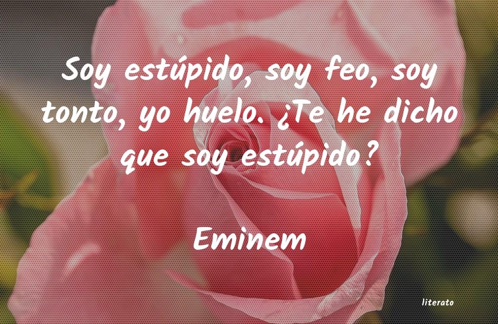 Eminem Soy Estúpido Soy Feo Soy To