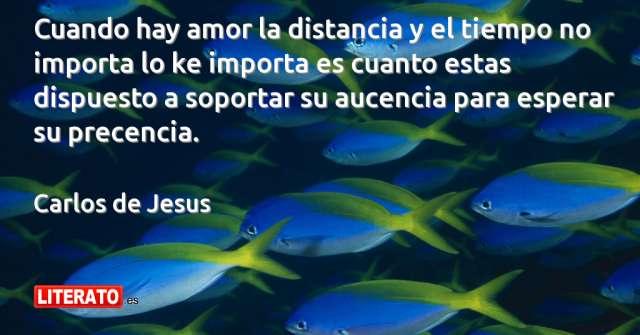 Frases de Carlos de Jesus