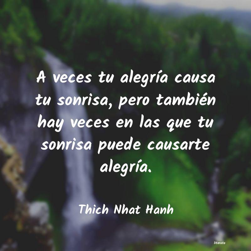 Thich Nhat Hanh A Veces Tu Alegría Causa Tu S