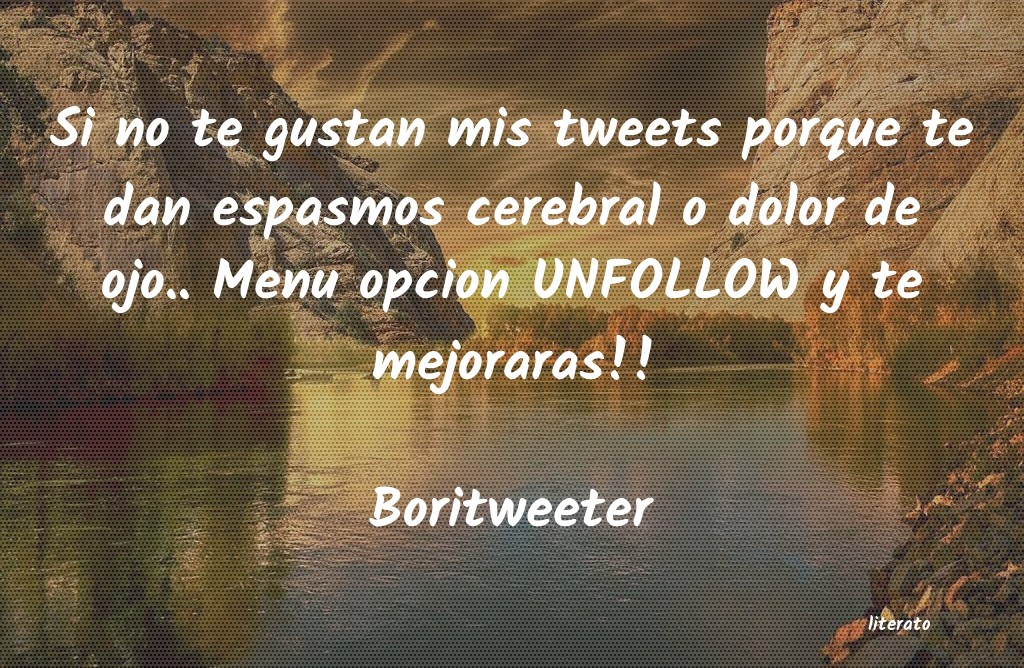 Frases de Boritweeter
