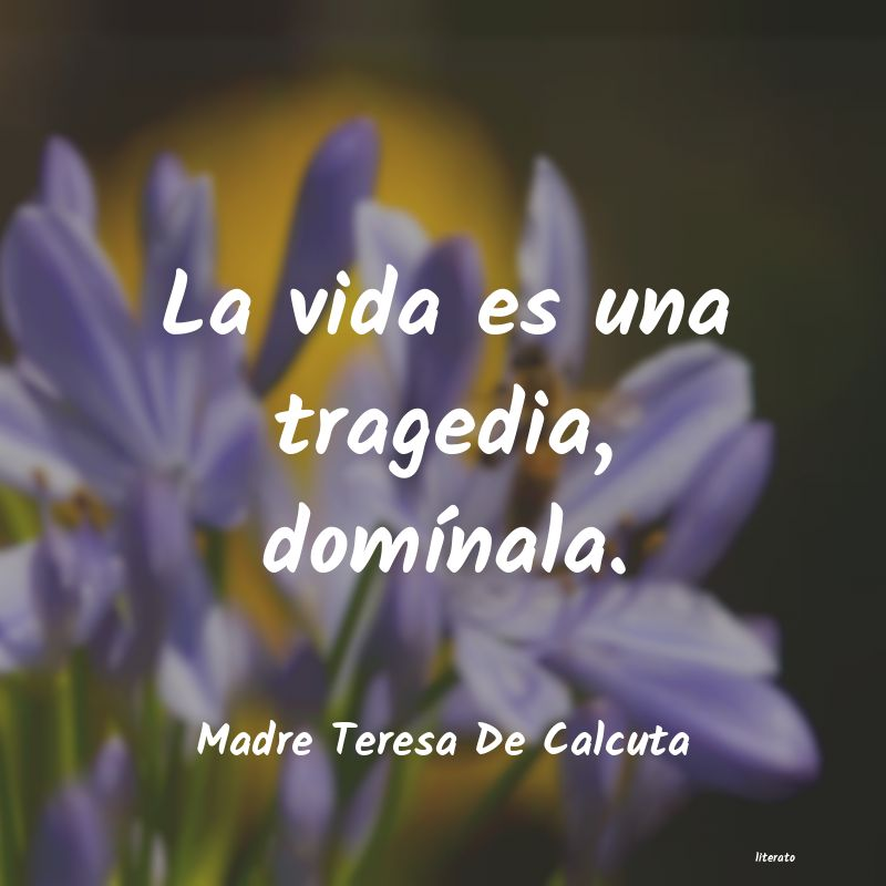 Madre Teresa De Calcuta La Vida Es Una Tragedia Domí