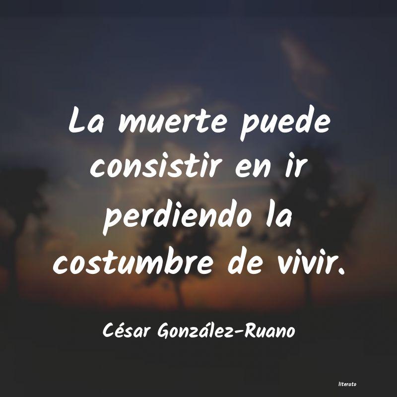 Frases Matonas De Cesar Lozano Literato 3