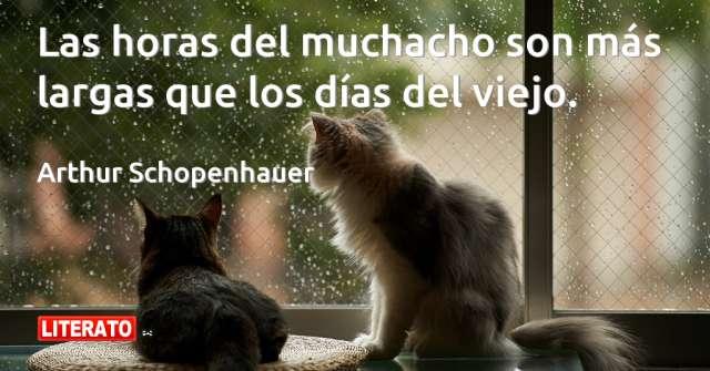 Frases de Arthur Schopenhauer