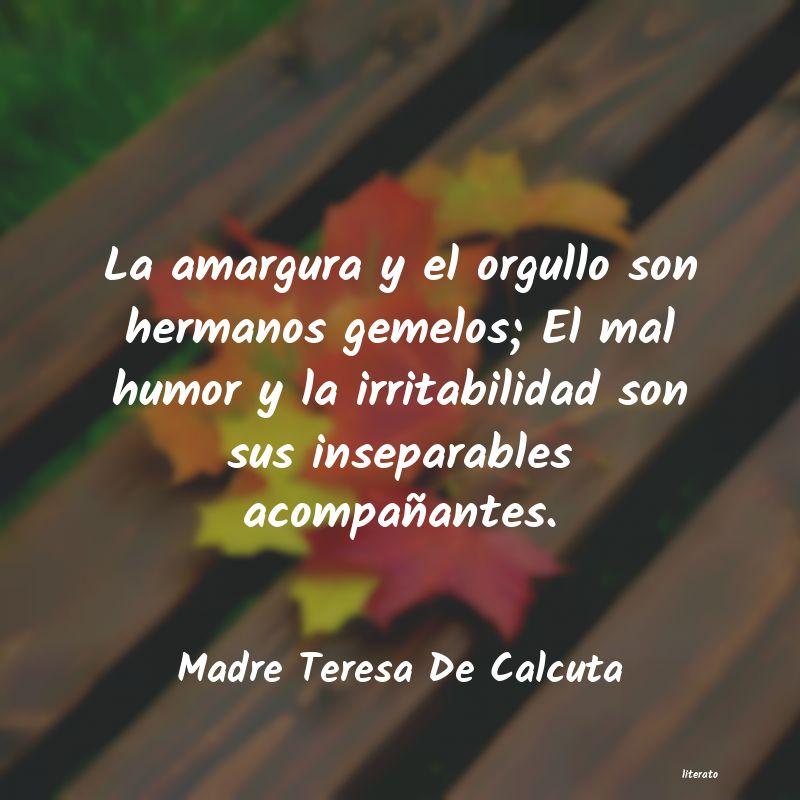 Frases Cortas De Orgullo Literato