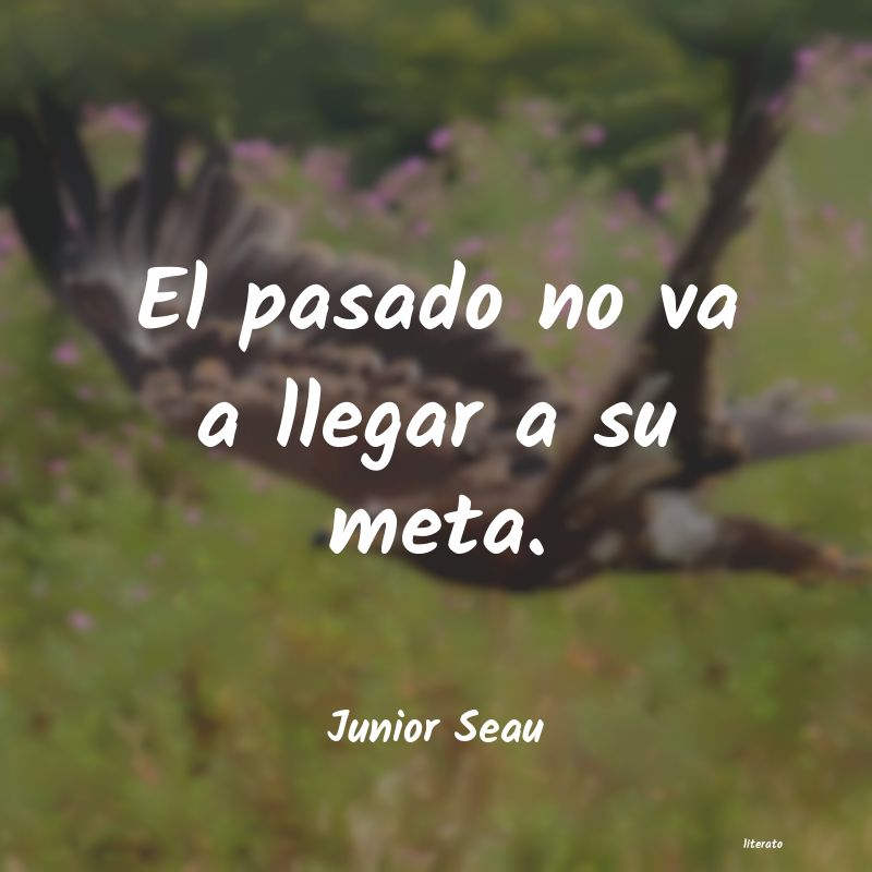 Frases de Junior Seau
