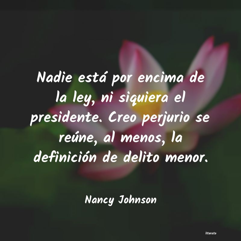 Frases de Nancy Johnson