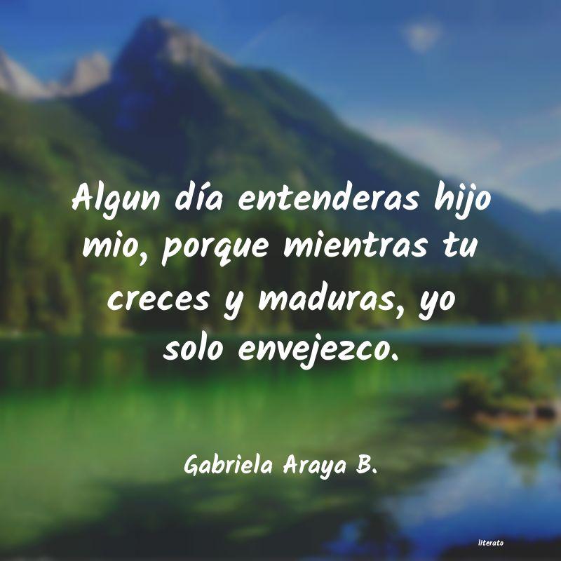 Gabriela Araya B Algun Día Entenderas Hijo Mio