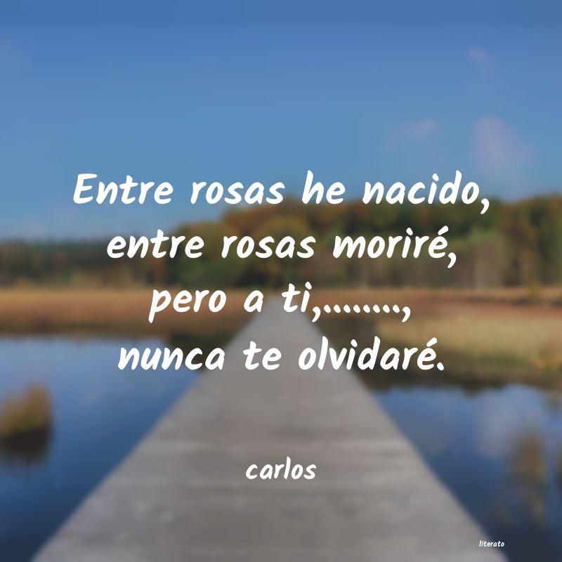 Carlos Entre Rosas He Nacido Entre R