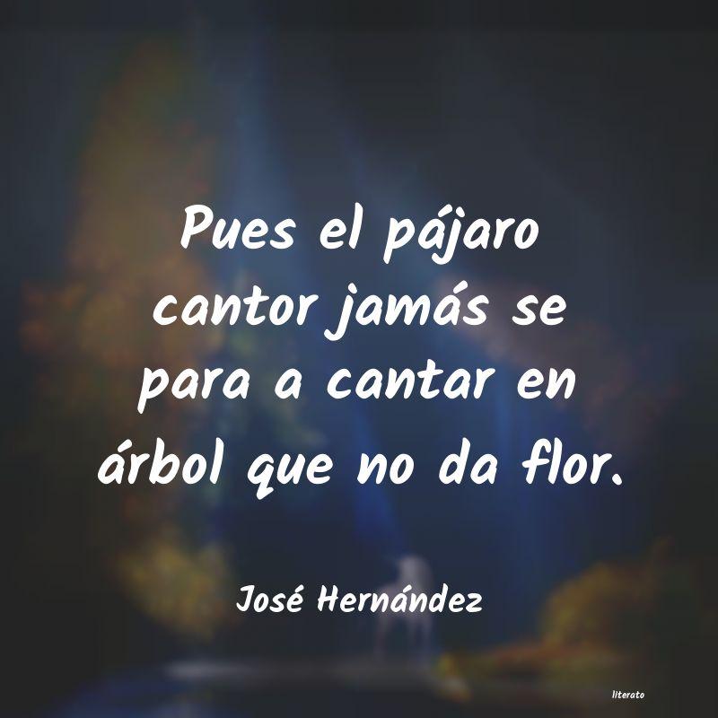 José Hernández Pues El Pájaro Cantor Jamás