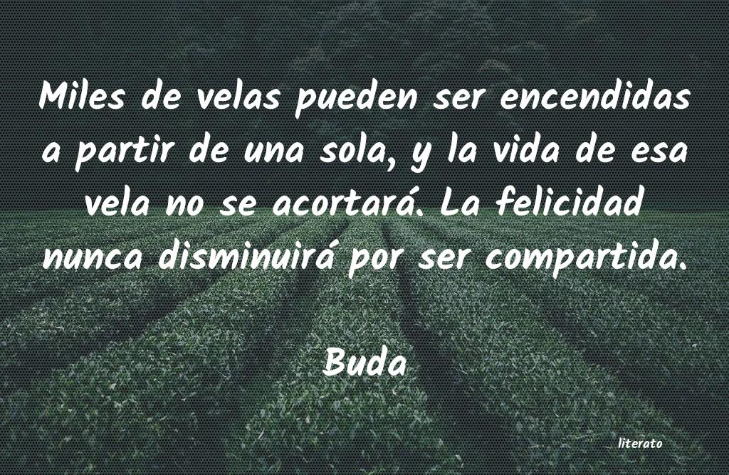Frases De Buda Literato 4