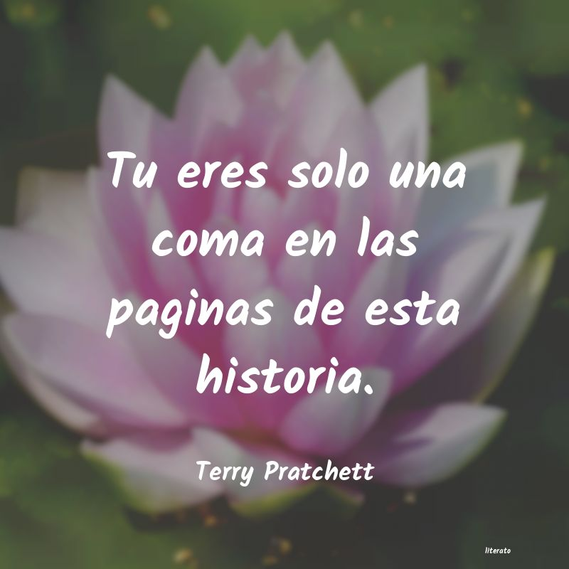 Frases de Terry Pratchett