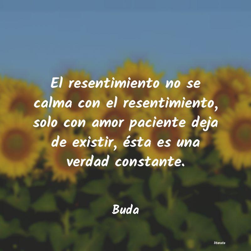 Frases Budistas De Amor Literato