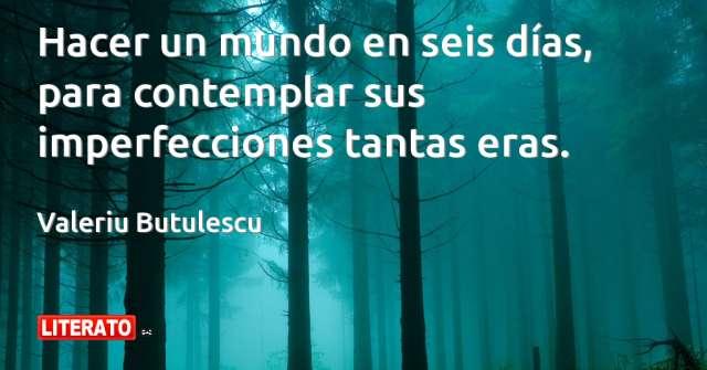Frases de Valeriu Butulescu