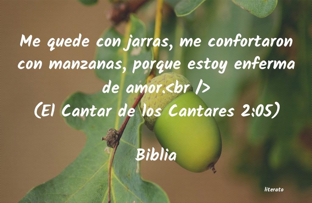 Biblia Me Quede Con Jarras Me Confor