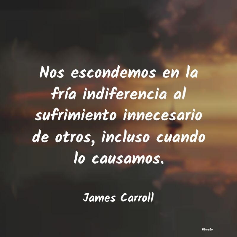 Frases de James Carroll