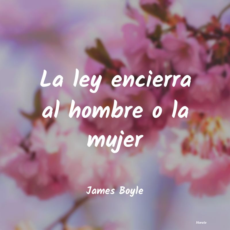 Frases de James Boyle