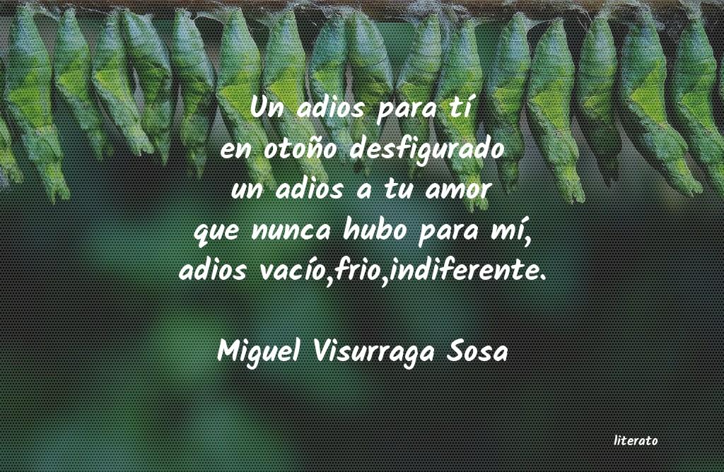 Miguel Visurraga Sosa Un Adios Para Tí En Otoño De