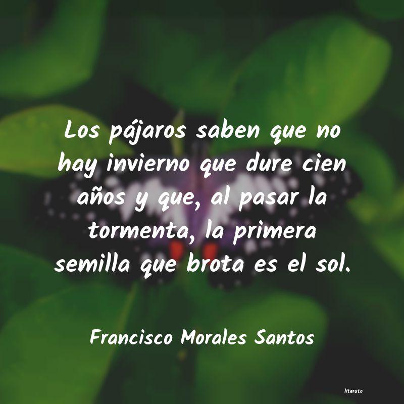 Francisco Morales Santos Los Pájaros Saben Que No Hay