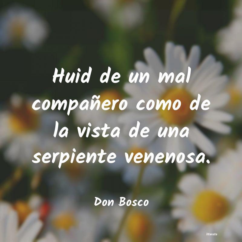 Don Bosco Huid De Un Mal Compañero Como