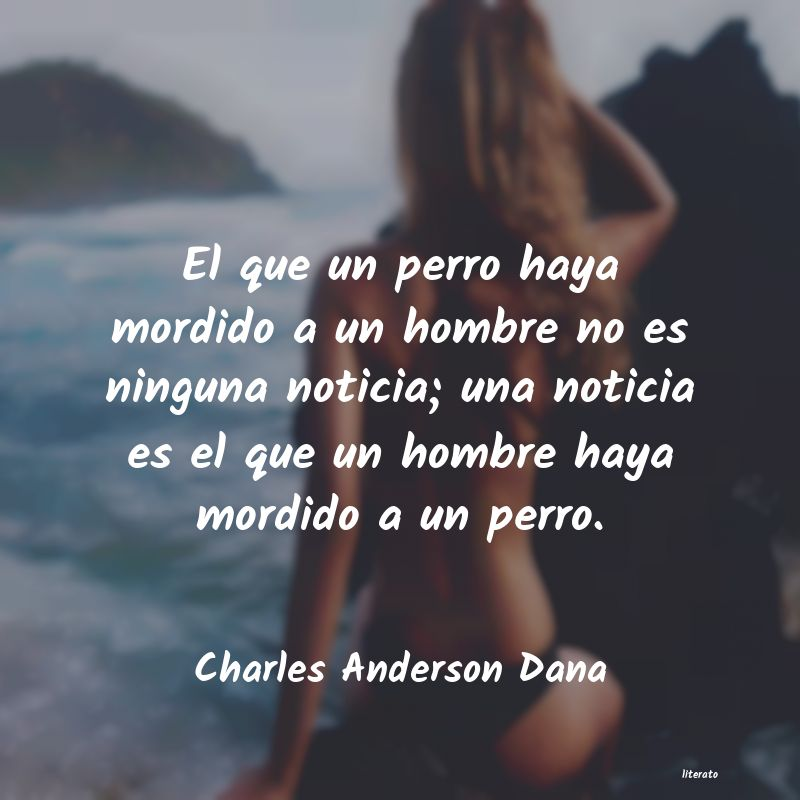 Frases de Charles Anderson Dana