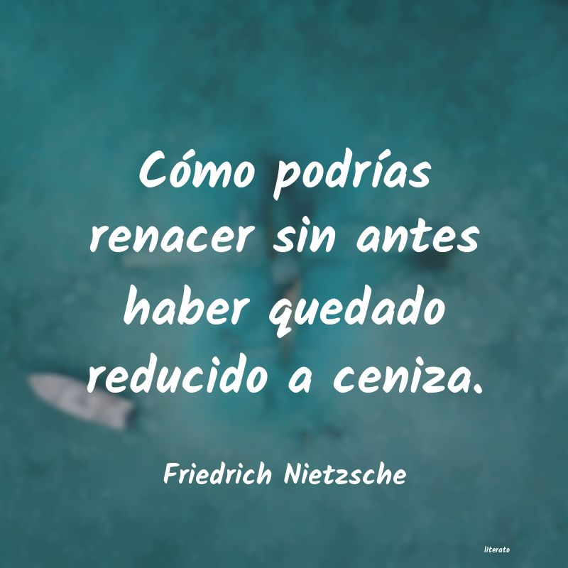 Frases De Renacer De Las Cenizas Literato