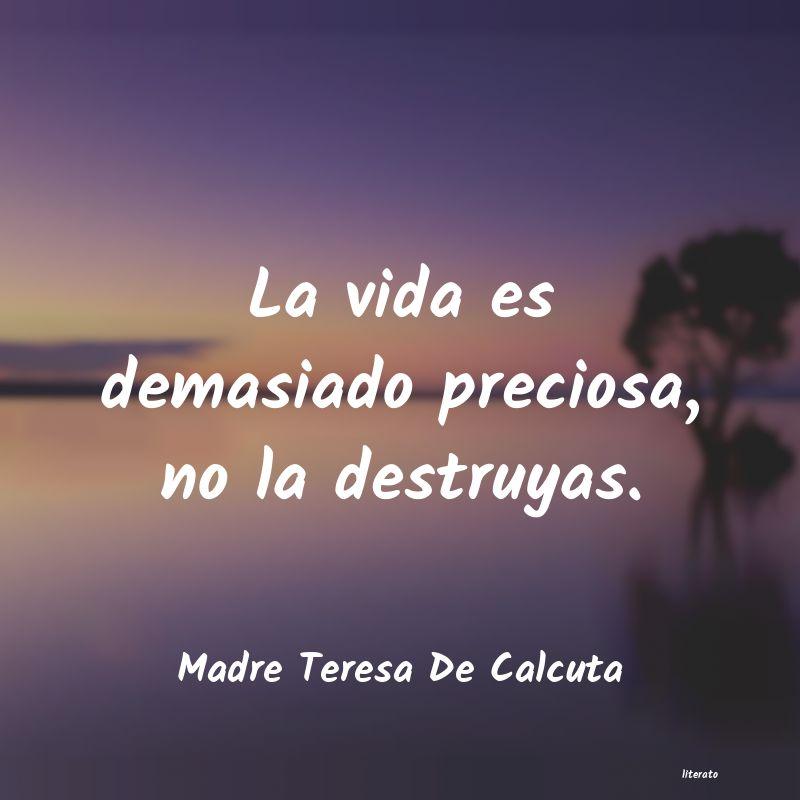 Madre Teresa De Calcuta La Vida Es Demasiado Preciosa