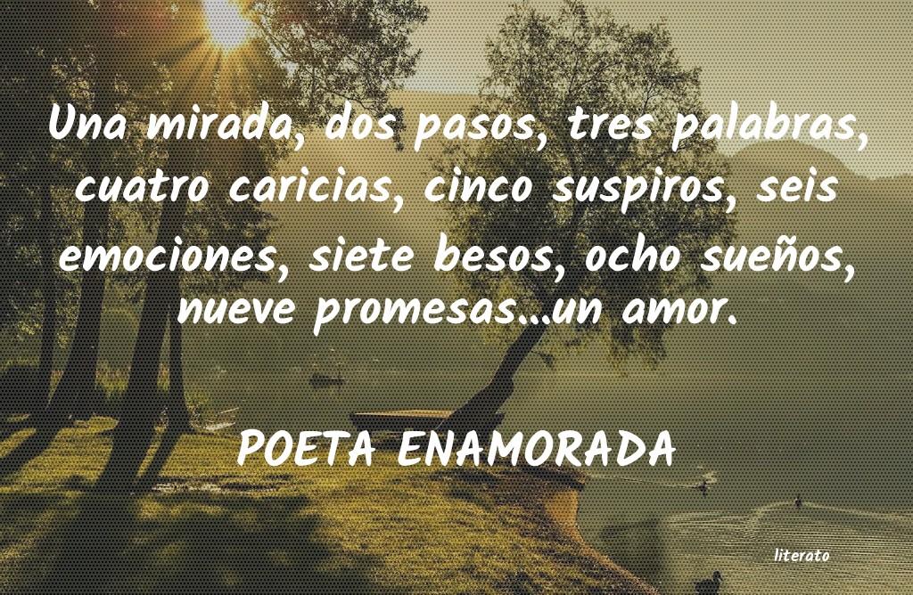 Poeta Enamorada Una Mirada Dos Pasos Tres Pa