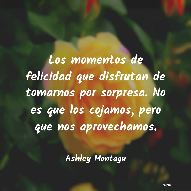 Frases de Ashley Montagu